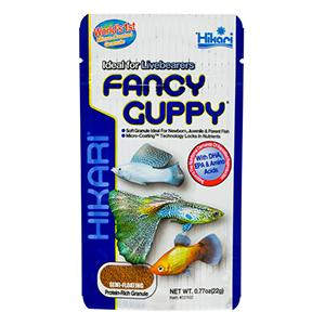 Hikari Fancy Guppy -22G